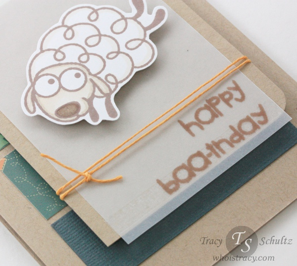 Sheep Birthday card close-up by Tracy Schultz @whoistracy.com