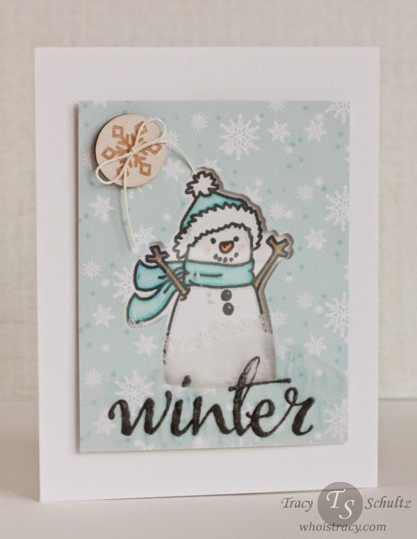 Winter Shaker card by Tracy Schultz @ whoistracy.com