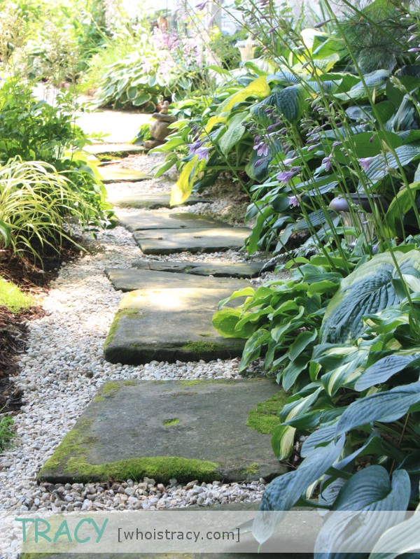Back Pathway by Tracy Schultz @whoistracy.com